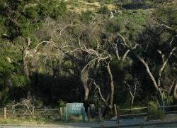 Luelf Pond Preserve