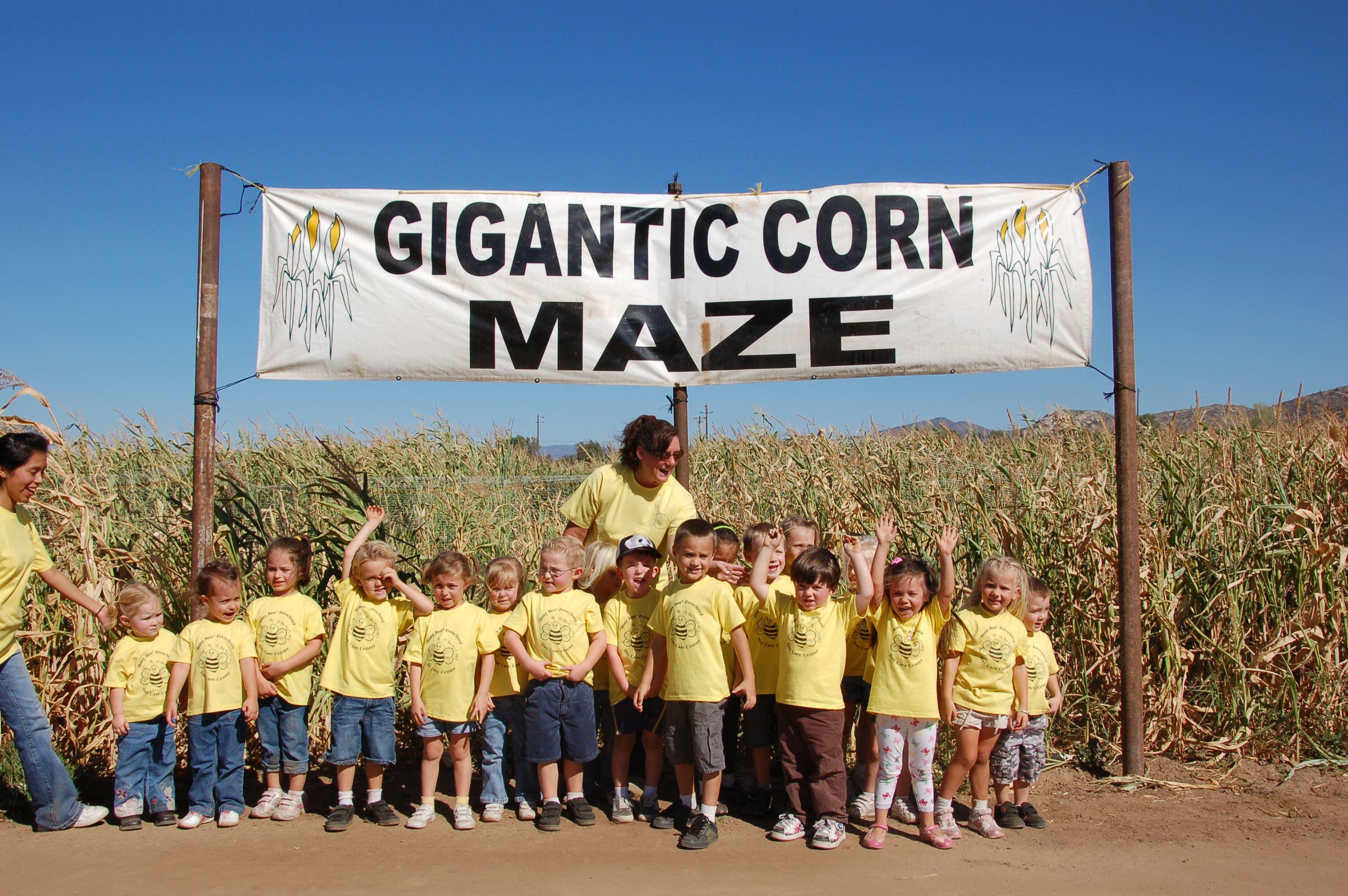 Mountain Valley Ranch Corn Maze