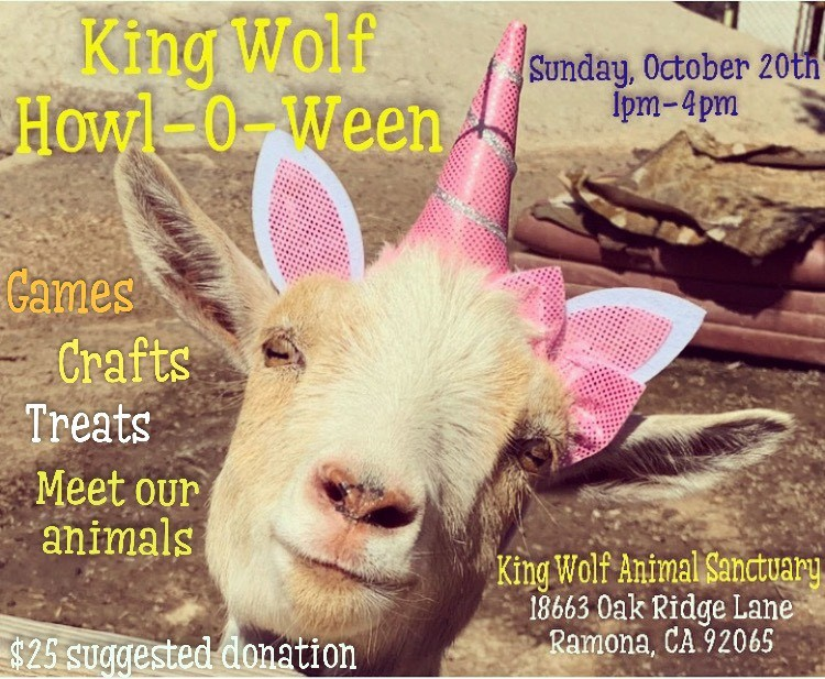 2019-1020 King Wolf Sanctuary Howl-O-Ween with goat