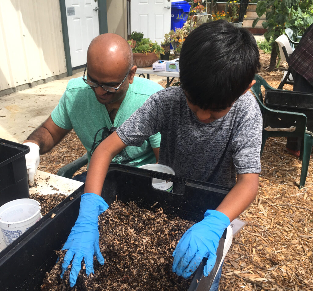 Solana Center Making Your Worms Feel at Home